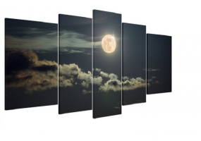 5pcs Stylish  Unframed Canvas Print Wall Paint Decoration Picture  - (D018)